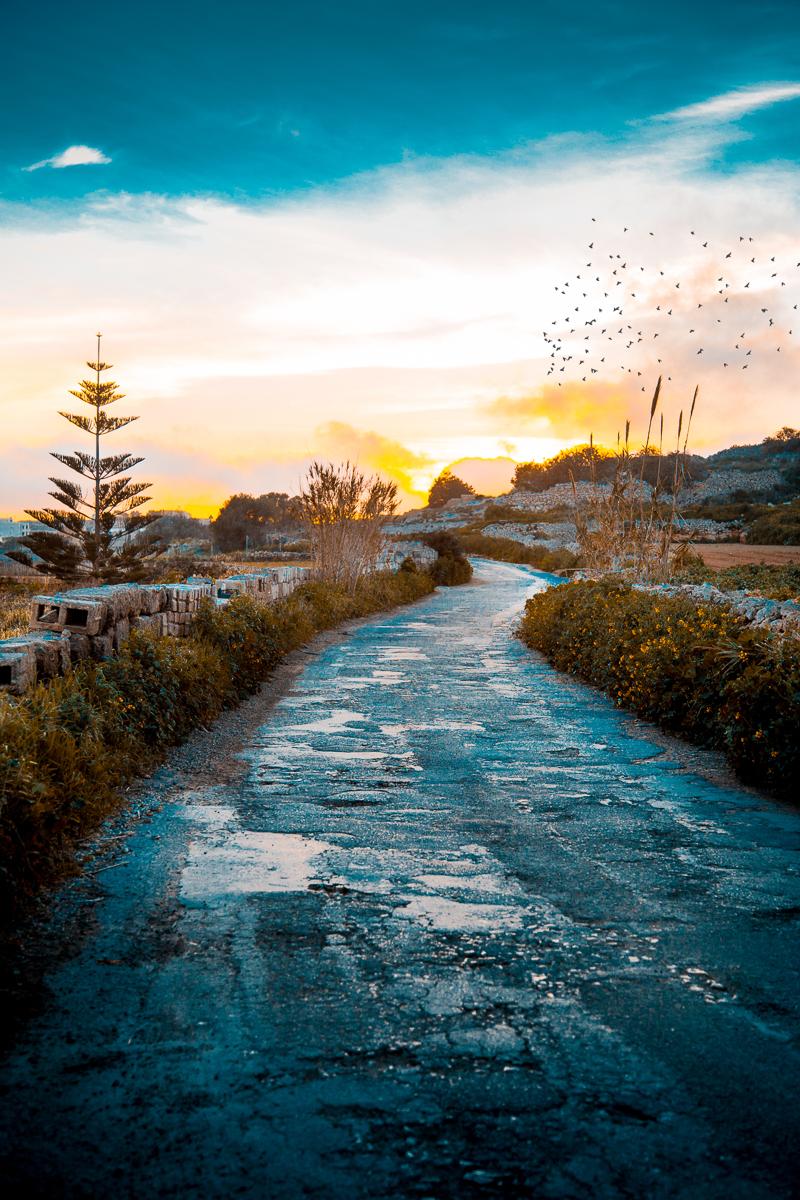 IMG_6383-Edit-2 Landscape & Cityscape